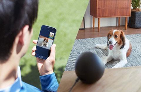 Amazon Echo Spotを室内確認用として使っているところ