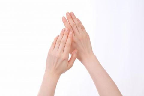 綺麗な手の甲