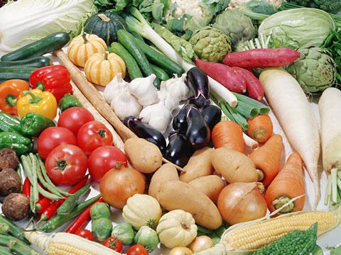 色々な種類の野菜