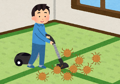 ダニ対策で掃除機をかけている人